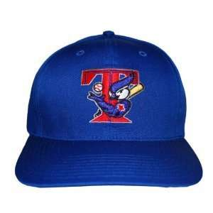 MLB Toronto Blue Jays Logo Snapback Hat Cap   Blue Sports