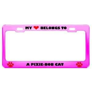 A Pixie Bob Cat Pet Pink Metal License Plate Frame Tag