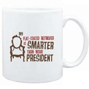 Flat Coated Retriever IS SMARTER THAN YOUR PRESIDENT !  Dogs Sports