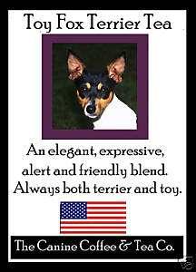 Toy Fox Terrier Tea