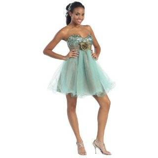 1817 Tulle Strapless Sweet 16 Short Homecoming Prom Dress: Clothing