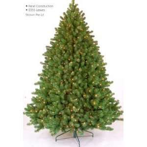 Tennessee Fir Christmas Tree SOLD OUT