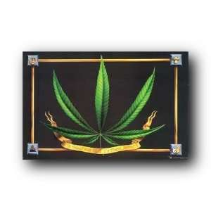 Weed Poster In Need High Marijuana Pot Leaf 22.5X34 203