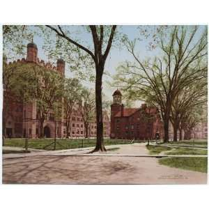 Reprint Phelps Hall and Lyceum, Yale College 1901