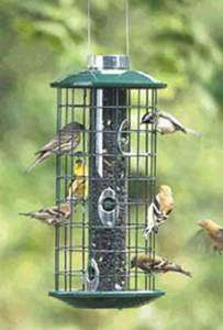 Duncraft Metal Sunflower Haven Seed Cage Bird Feeder