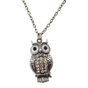 Silver Tone Owl Pendant with Long Chain Neckpiece