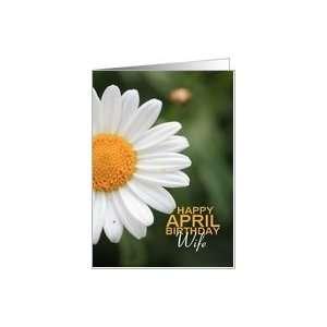 wifeHappy April Birthday   Daisy April Birth Month Flower