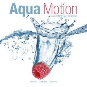 Aqua Motion 2013 Wall Calendar 12 X 12 Office Products