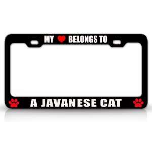 MY HEART BELONGS TO A JAVANESE Cat Pet Auto License Plate