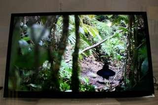 Sony Bravia XBR 55HX929 55 Full 3D 1080p HDTV LED LCD SMART TV(aop
